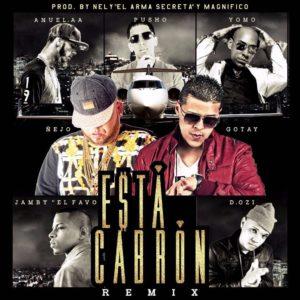 Ñejo Ft. Gotay, Pusho, Anuel AA, D.OZi, Yomo & Jamby El Favo - Esta Cabrón (Official Remix)