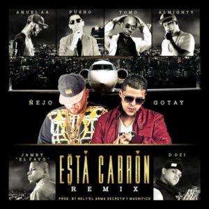 Ñejo & Gotay Ft. Anuel AA, Yomo, Pusho, Almighty, D.OZi & Jamby El Favo - Esta Cabrón (Official Remix)