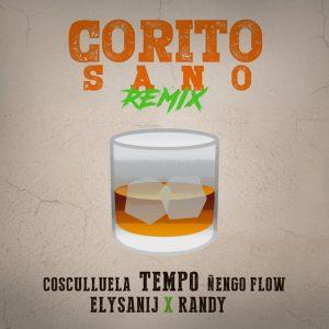 Tempo Ft. Ñengo Flow, Randy, Cosculluela Y Elysanij – Corito Sano (Remix)