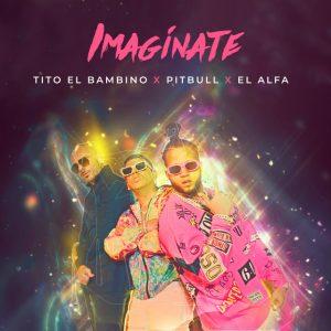 Tito El Bambino Ft. Pitbull Y El Alfa – Imaginate